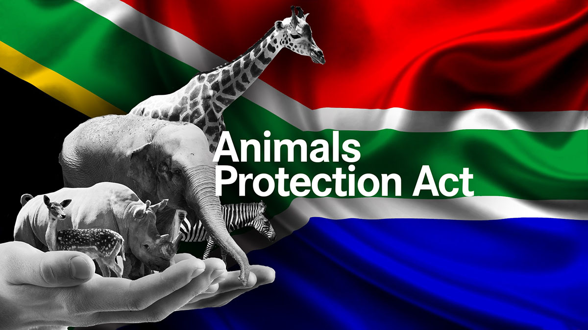Animals Protection Act