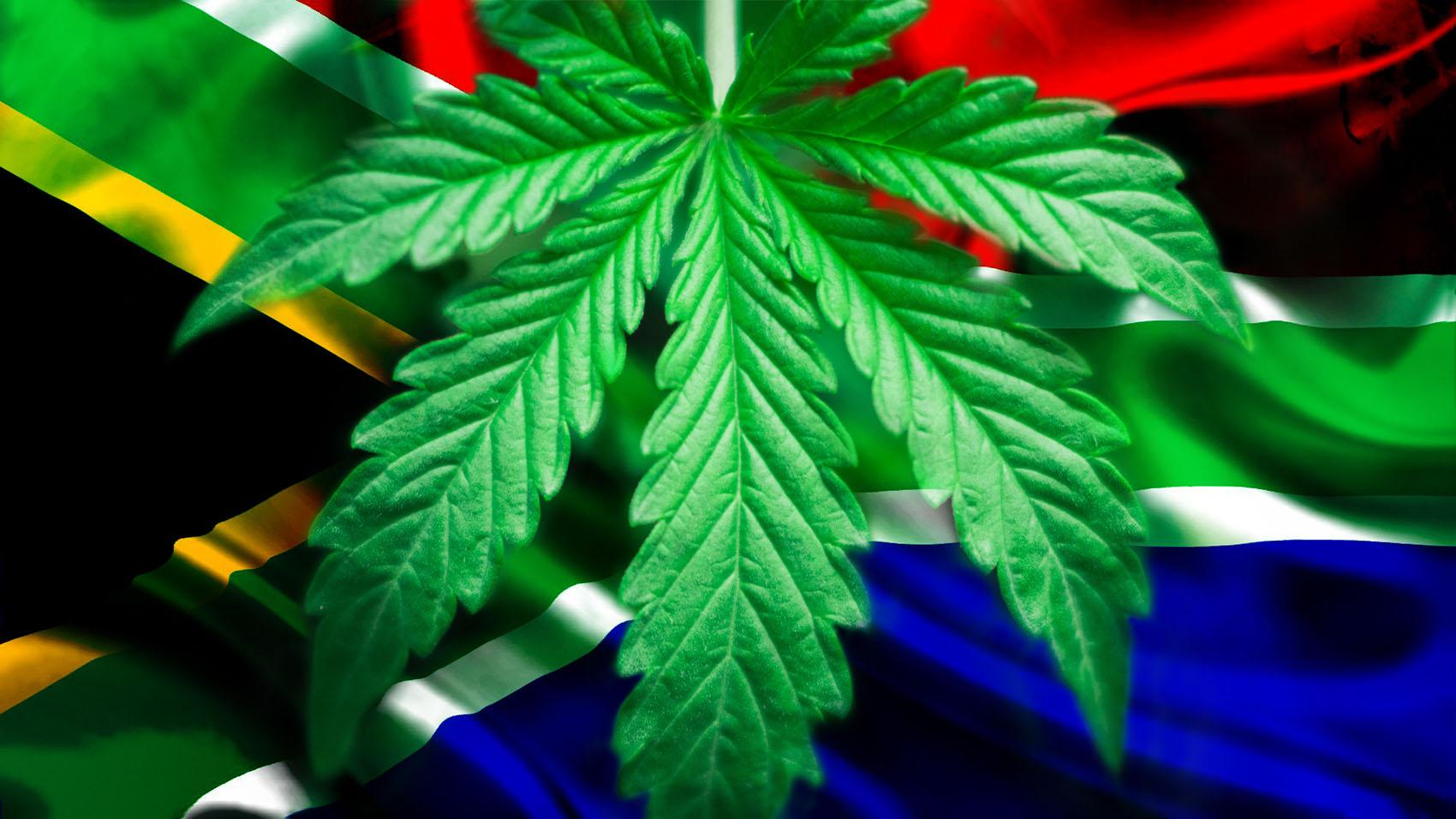 Cannabis-bill-DearSA